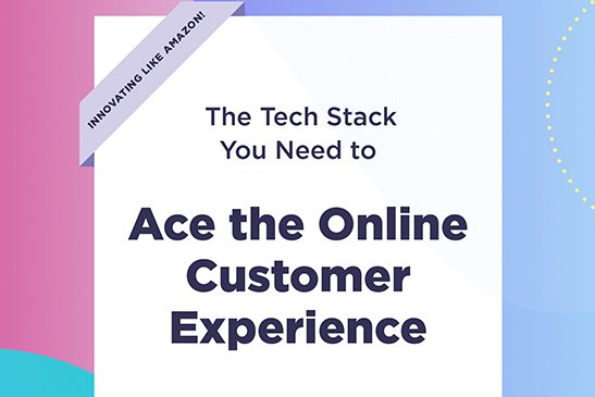 Ace the Online Customer Experience PDF